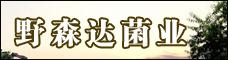 永仁野森达菌业限公司