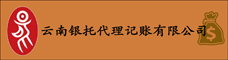 云南银托代理记账有限公司