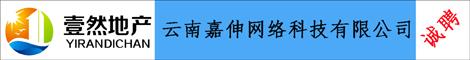 云南嘉伸网络科技有限公司_昆明招聘网